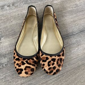 Great Condition Coach Leopard Ballet Flat